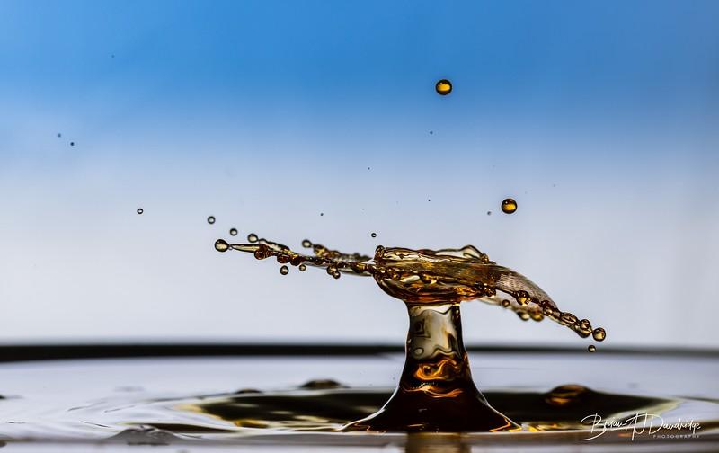 Splash-Art-Orange-1522.jpg