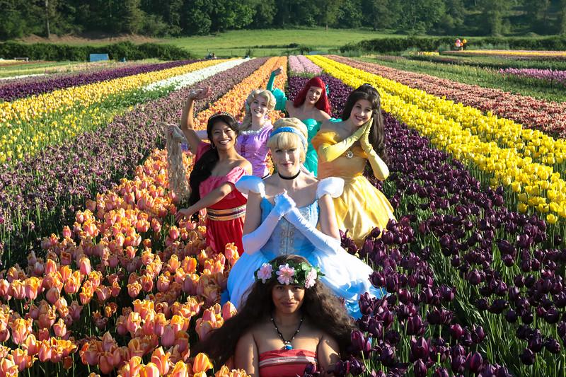 WD Princesses Tulips 2019-30.jpg