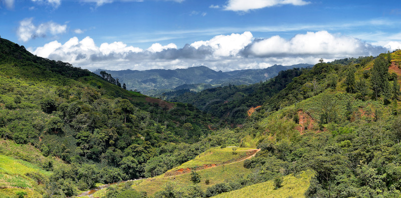 copan road 2.jpg