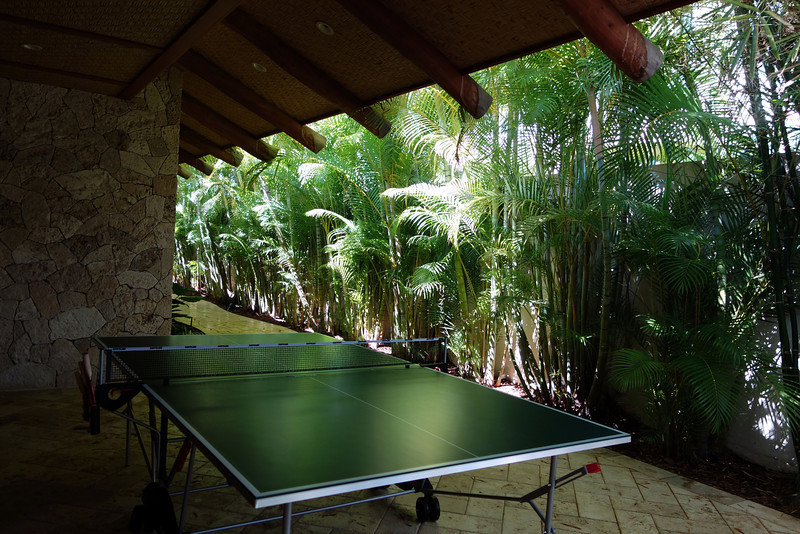 2014-02-21-0013-Hale Ohia-Outdoor Ping Pong Table.jpg