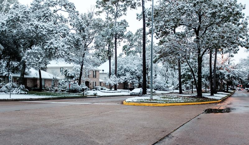 blizzard 2017-4135.jpg