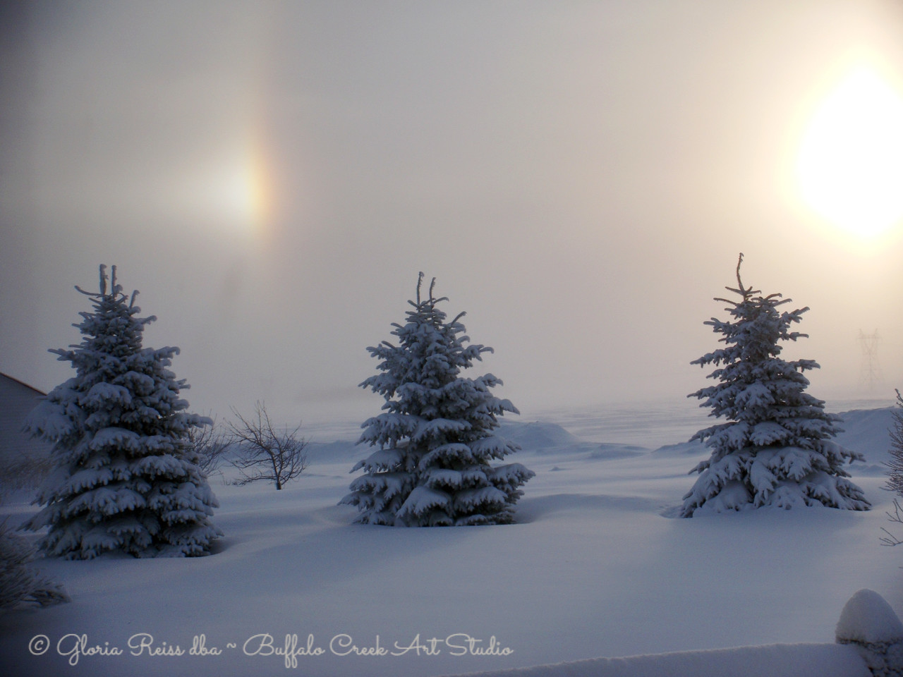 Sun Dogs in the morning New Years Day 2011