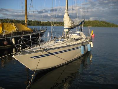 Blue Ribbon sales and first sail