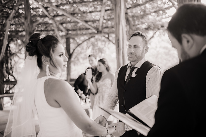 Vicsely & Mike - Central Park Wedding-22.jpg