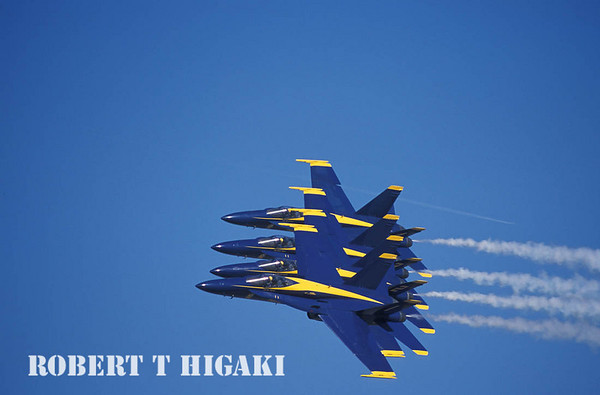 The Navy Blue Angels