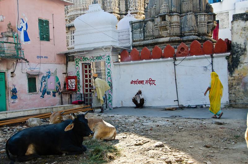 India 301. Udaipur.jpg