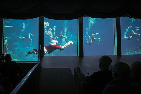Weeki Wachee Springs Mermaid Theater Christmas Show