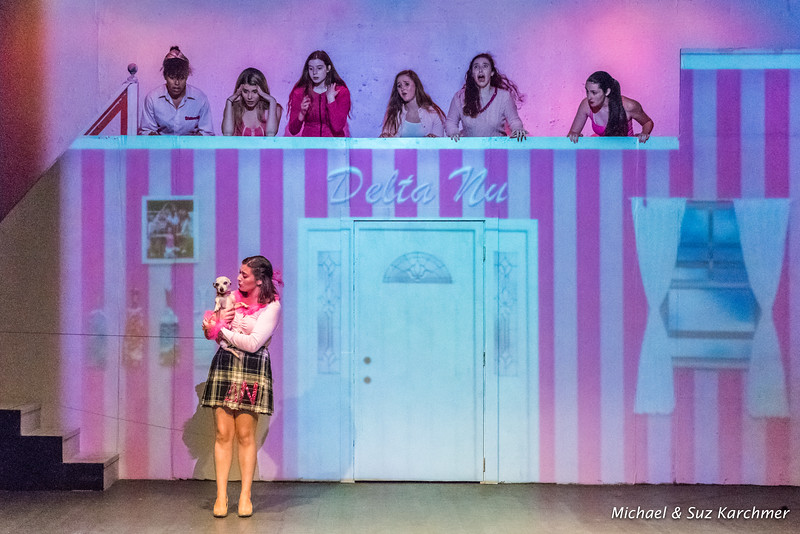 APA Legally Blonde COLLECTION HR-2.jpg