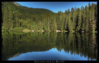Lac du Poursollet 2012