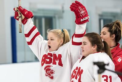 BSM Girls Hockey 2016-17 Season