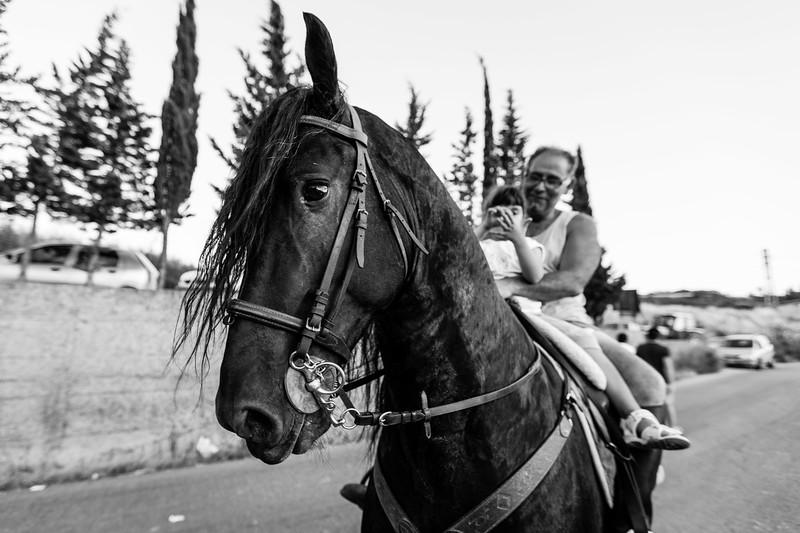 """un cavallo durante il riscaldamento prima della """"acchianata"""" della sera"""