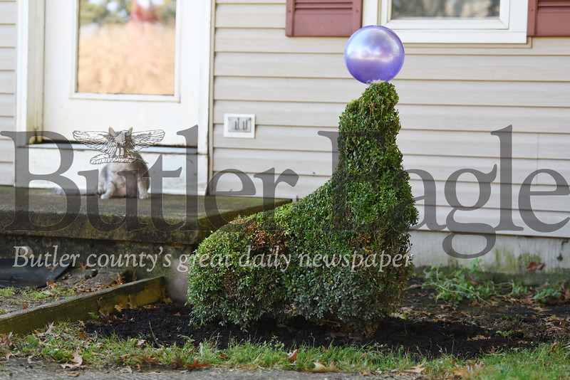 Harold Aughton/Butler Eagle: Terry Heasly has turned her edges into lawn art.