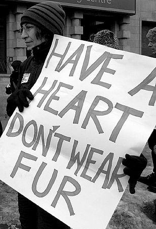 Have a Heart: Don't Wear Fur