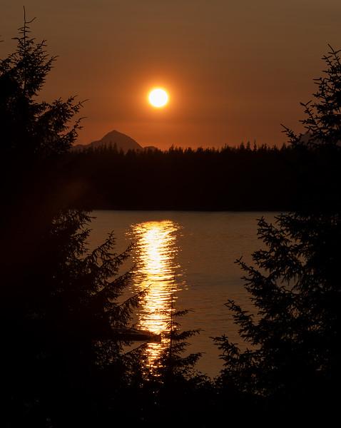 Glacier Bay_DSC04739.jpg