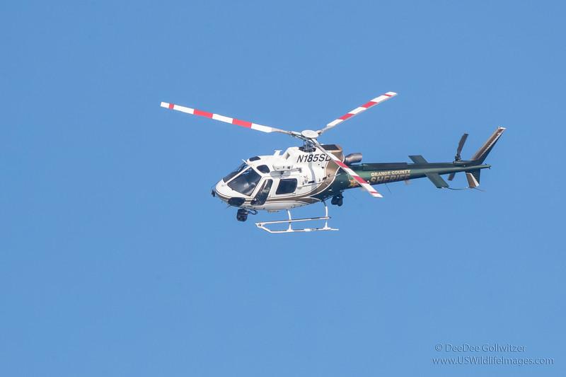 OC_Sheriff_Helicopter_EO9I9637.jpg