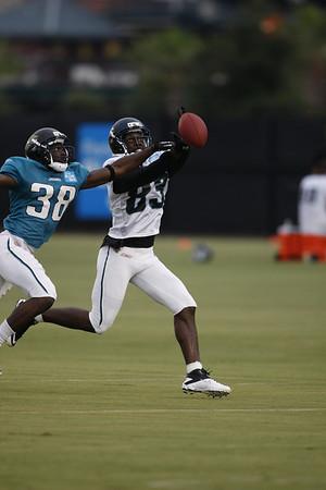 2011 Jacksonville Jaguars