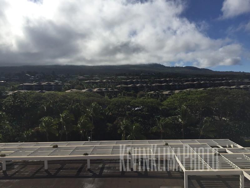HawaiiPhonePics-365.JPG