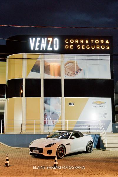 Venzo-62.jpg