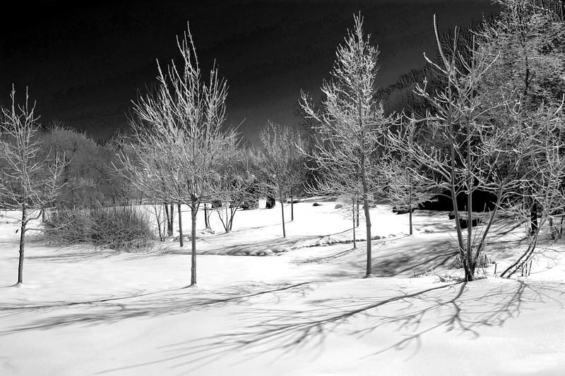 20110307_Lower Falls_1552HDRBW.jpg