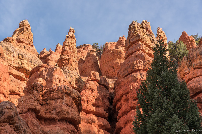 Pink Ledges Trail - Dixie National Forest