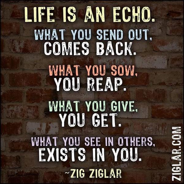 Life is an echo.JPG