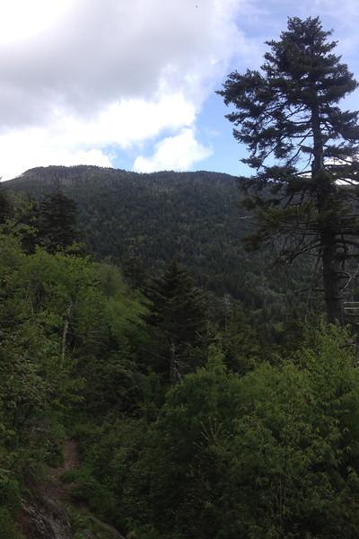 Old Mitchell Trail (6,120')