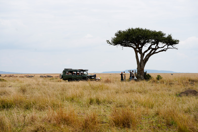 safari-2018-109.jpg