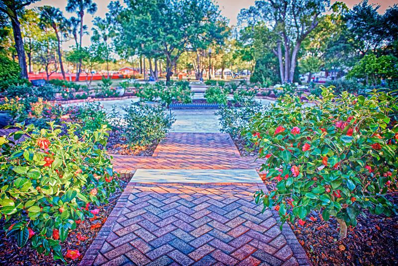 Rose Garden in Central Park 023.jpg