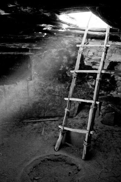 Portfolio - Black and White