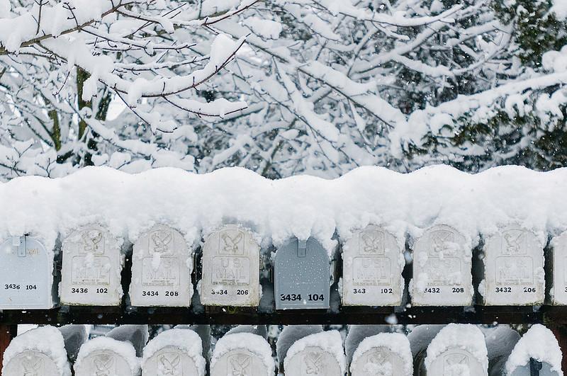© Paul Conrad/ Pablo Conrad Photography - A snowy Sunday in Bellingham, Wash., on Feb. 23, 2014.