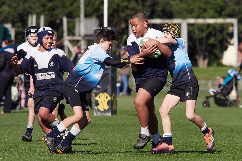 20190831-Jnr-Rugby-060.jpg