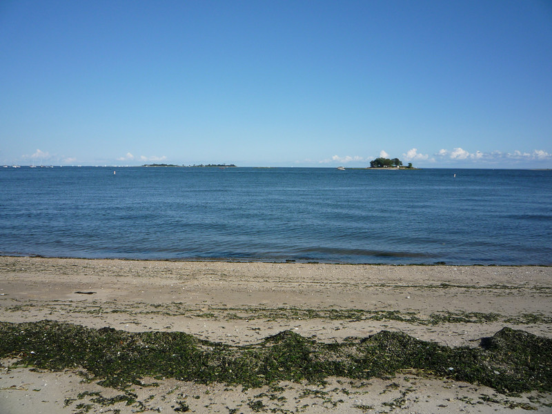 Calf Pasture Beach (5).JPG
