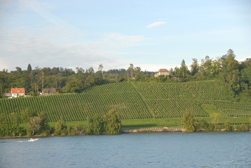 Bodensee 353.jpg