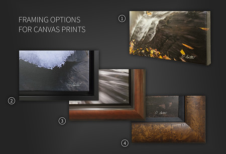 Canvas Framing Options