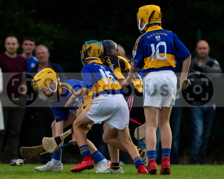 11th August 2019 Tipperary Co-Op West Tipperary Under 12 B Hurling Final Knockavilla Donaskeigh Kickhams vs Sean Treacys
