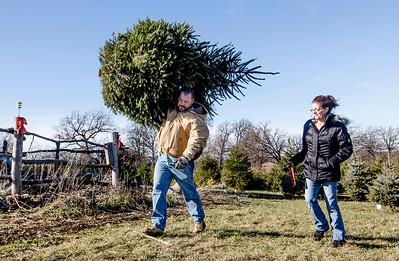 20151205 - Christmas Tree Farm (SN)