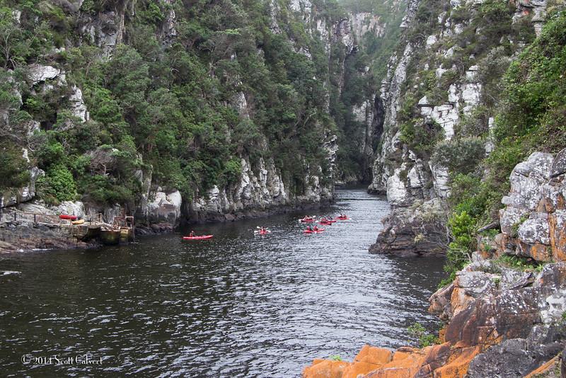South AfricaS-19.jpg