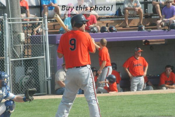 STATE: Elrosa v. Pelican Rapids 08-20