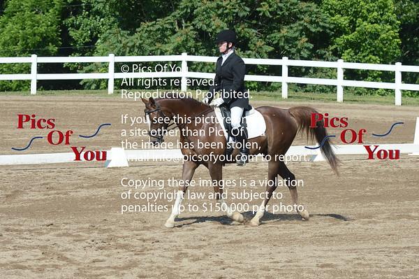 VAHA Arabian Horse Show and Futurity June 2012