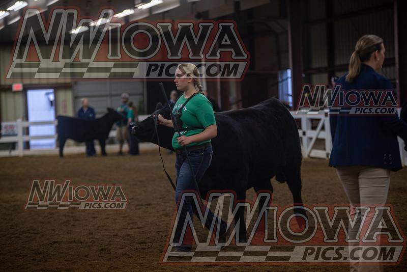 Beef Show - 9-8-19 - CCF