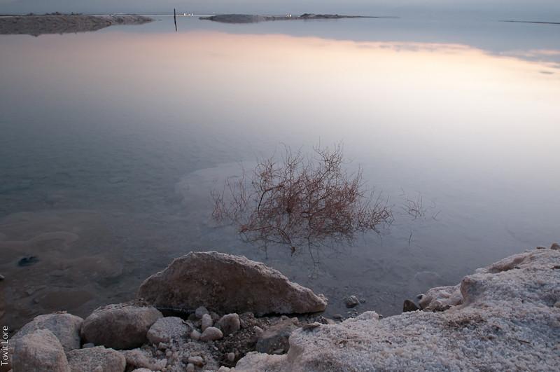 Dawn at the Dead Sea