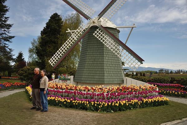 Roozengaarde Bulb Farm
