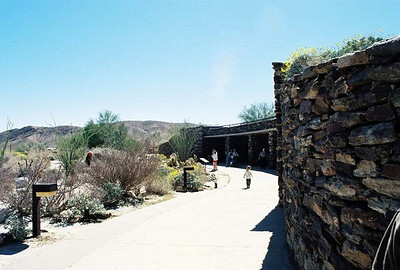 Anza Borrego Desert State Park: Trips