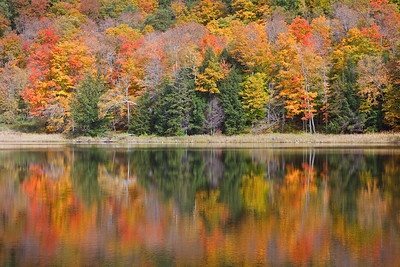 New England Autumn - 2009