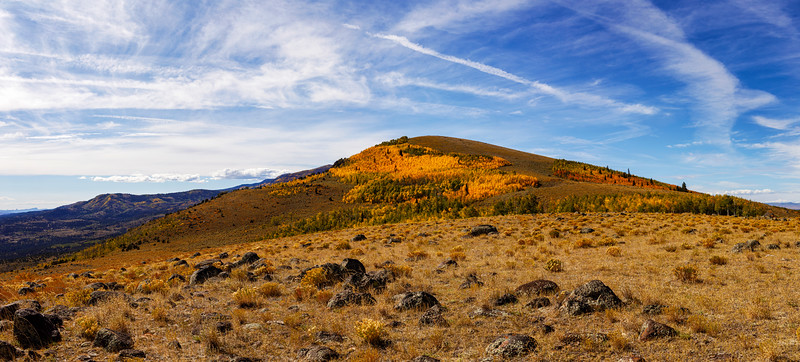 Autumn Comes to the  Boulder Field