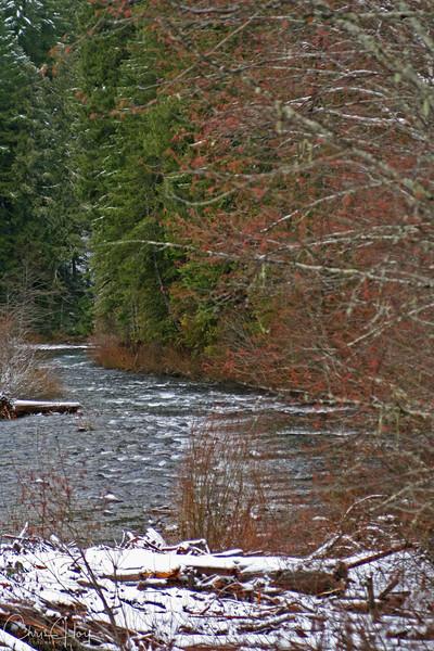 Santiam River in the Winter