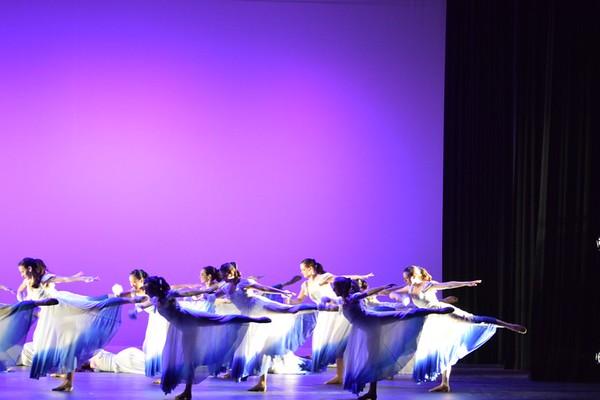 2016 Spring Show Team Dances