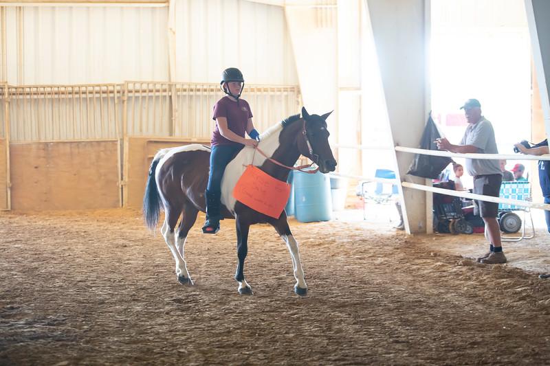 HorseCostume-54.jpg