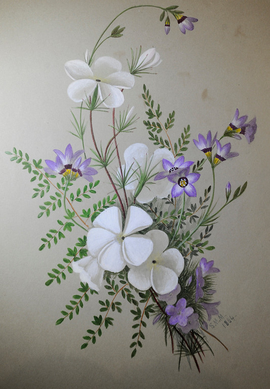 ". Sophie Mitchel painted this Silver Lupine. ""When they were wild,\"" is the Huntington Library\'s new Wildflower exhibition which kicks off a month of talks, workshops and wildflower sales. San Marino, CA 3/8/2013(John McCoy/Staff Photographer)"