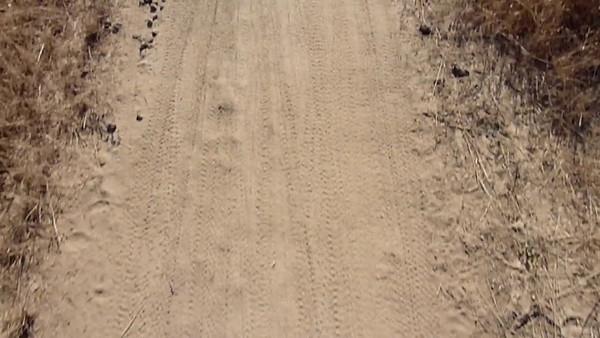 Knickerbocker Muni Race 2009